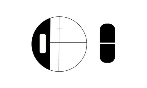 GEO FENNEL GFE 32-L Otomatik Mühendis Nivosu